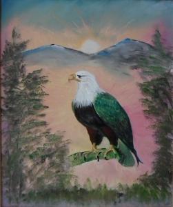 Eagle enjoying Sun